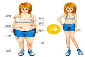 怎么看吸脂术是否成功